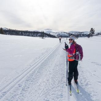 Vintersleppet 2017. Foto Solveig Hjallen-10