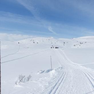 Vintersleppet 2017. Foto Solveig Hjallen-14