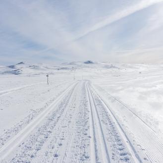 Vintersleppet 2017. Foto Solveig Hjallen-18