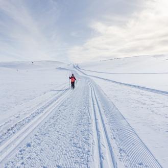 Vintersleppet 2017. Foto Solveig Hjallen-19