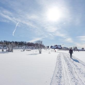 Vintersleppet 2017. Foto Solveig Hjallen-9